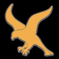 falcon87pl